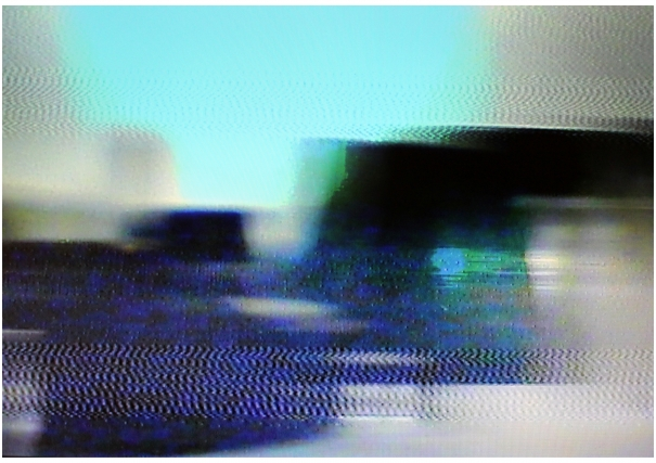 MONITORED LANDSCAPE SERIES : STILLS #3 by Robin Tarbet