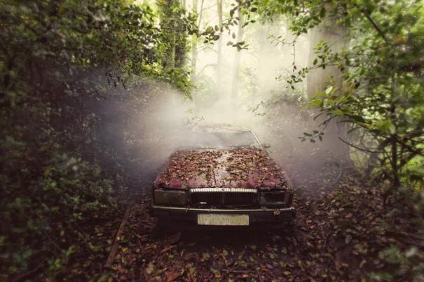 Jaguar by Gina Soden