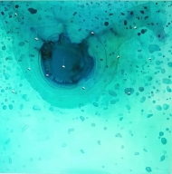 Blue Bay | The Big Blue Hole (Belize)