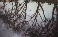 Reflections, Hampstead Heath II Fine Art Archival print
