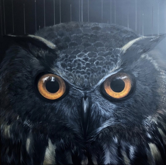 The Darker the Night, The Brighter the Stars by Louise McNaught