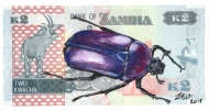 Flower Beetle on Burundian Franc