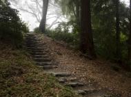 Twenty-two Stone Steps Redux