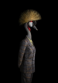 Bird – Portrait Number Eighty Six