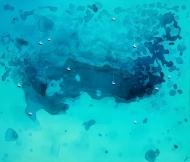 Blue Bay | Tortuga