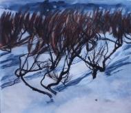 A Winter in Skagastrond