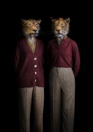 Lionesses - Portrait Number Ninety Nine