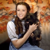 Cindy Sherman's dog