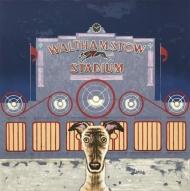 Wes Anderson's dog - Walthamstow Stadium