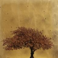 Prunus Serrulata II