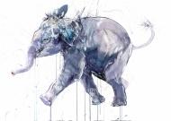 Young Elephant I