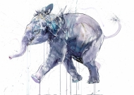 Young Elephant I Diamond Dust Edition