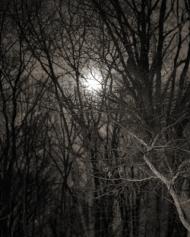 Natal Moon