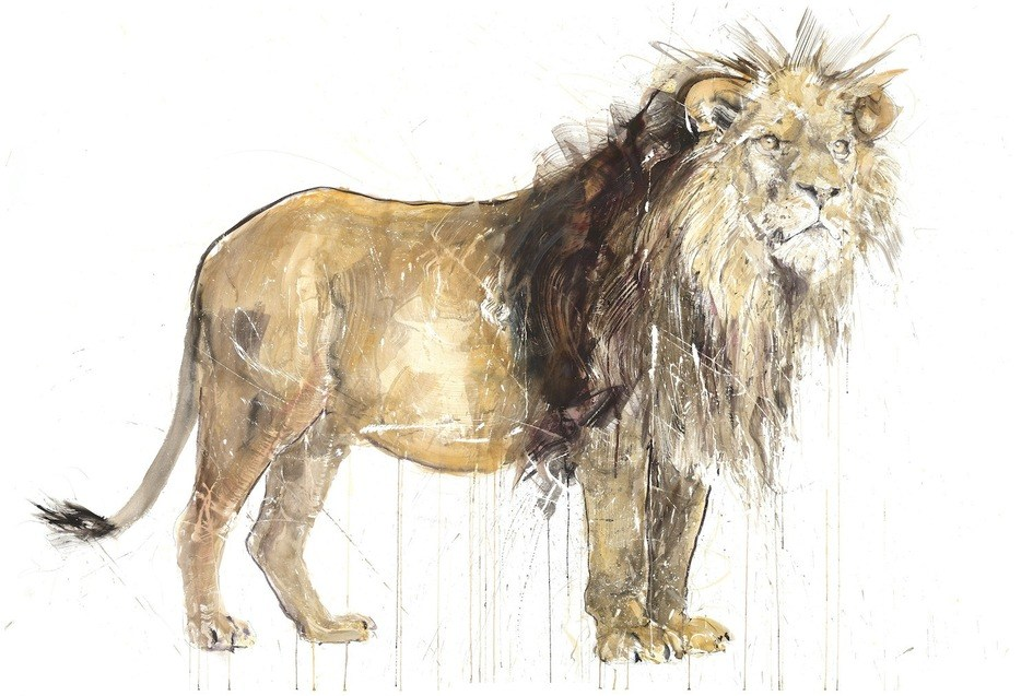 Dave White: A new kind of animal art